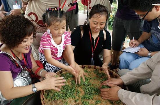 """成都市民在""""茶乡游学""""项目中学习体验手工制茶.jpg"""